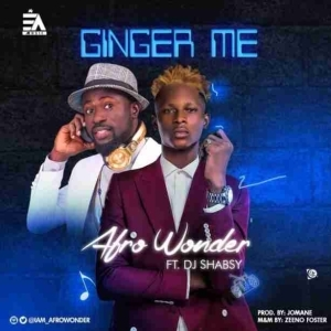 Afro Wonder - Ginger Me Ft. DJ Shabsy
